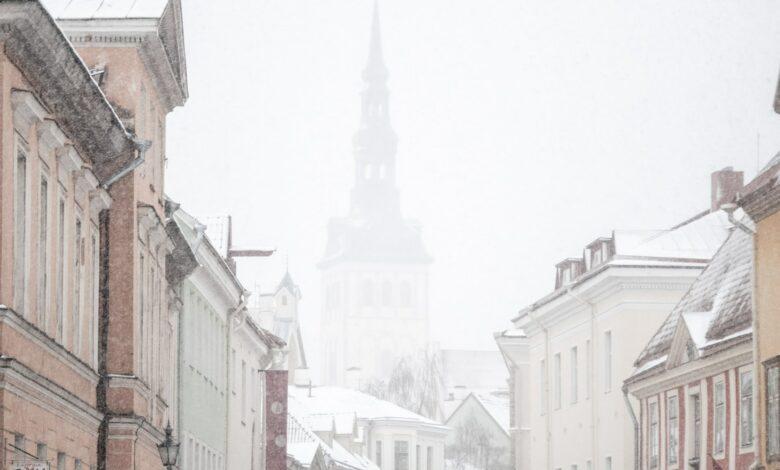Perspėjame artimiausias tris dienas smarkiai snigs. Žadama apie 30 cm sniego.