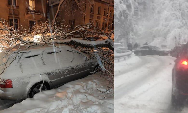 Sostinėje dėl iškritusio didelio kiekio sniego: daugybė avarijų, ant kelio krentantys medžiai ir eismo sutrikimai