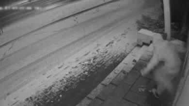 Paleistas po sulaikymo vaikinas grįžo ir apgadino komisariato durų žaliuzes (video)